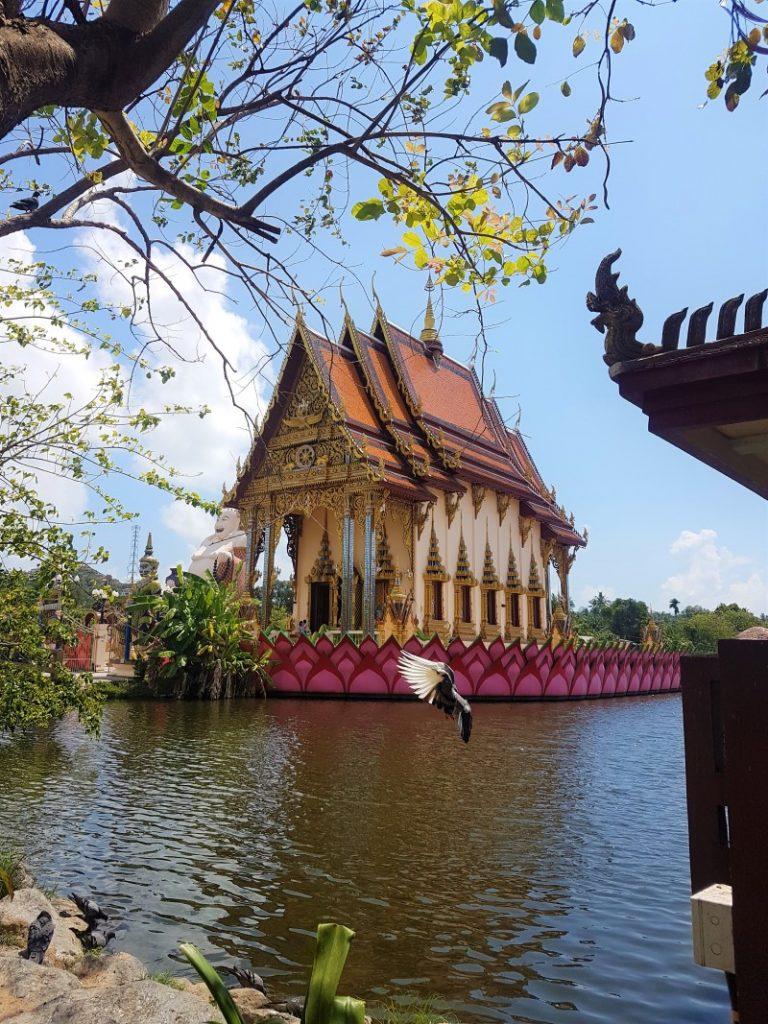 Koh Phangan, Thailand: the Ultimate Guide - Hammock Stories